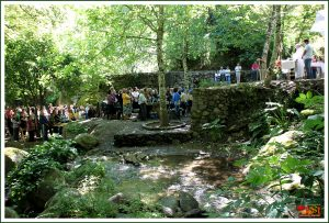 Dia da Espiga 2011 Monchique